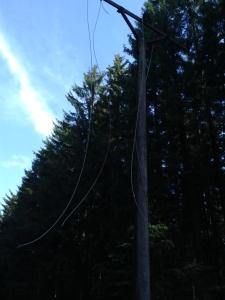 Diese Masten transportierten einst Strom zu einer der tödlichsten Grenzen des Eisernen Vorhangs