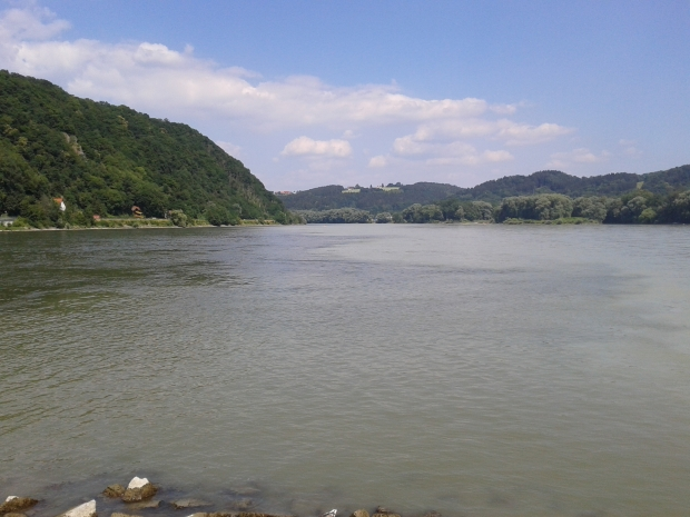 Links die dunklere Donau, rechts der hellere Inn.