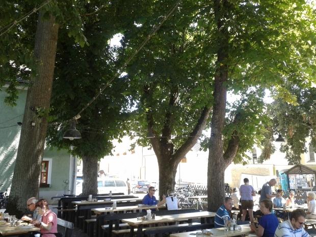 Die Bäume sollen teilweise aus dem 19. Jahrhundert stammen.