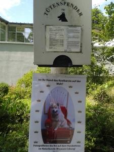 Im Naturkundemuseum kann man den Hund auf einen Thron setzen. Wenn er die Natur als Thron hernehmen will, gibt's Tüten.