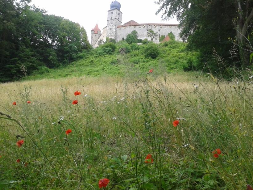 Die Veste ist das Wahrzeichen der Stadt.